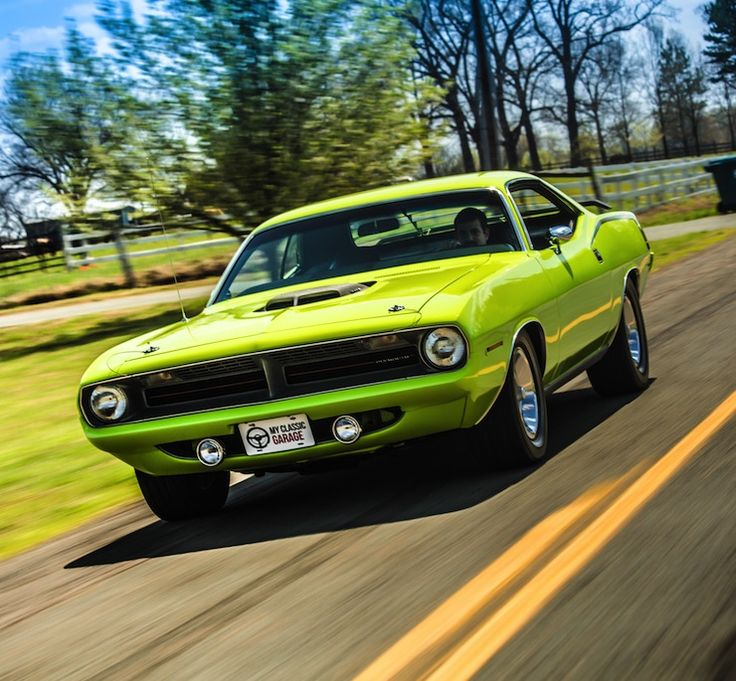 496 Best Images About 'CUDA-Fish Out Of Water~~ On