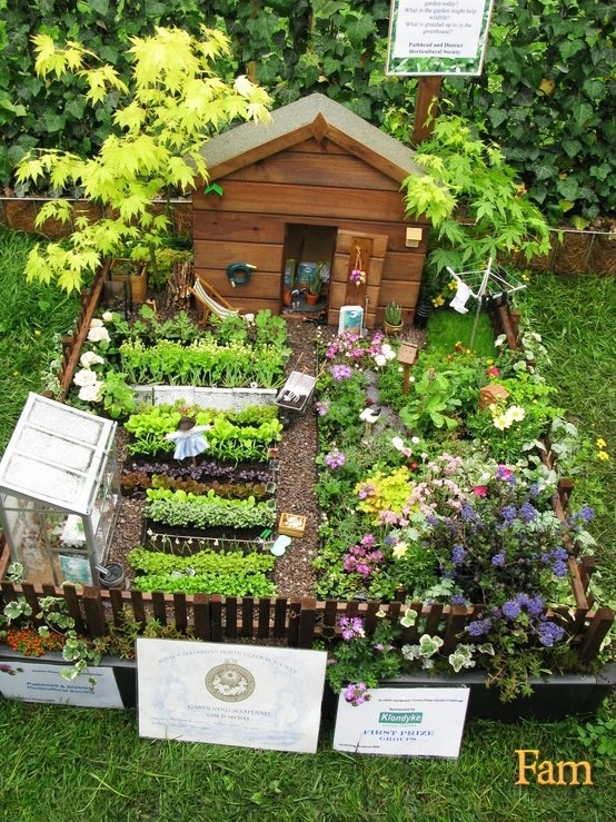 Micro Garden Ideas find this pin and more on micro farms urban farms edible gardens fruit and vegetable gardens Mini Garden I Need To Paint My Shed Wooden Lookit Looks So