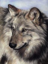 Prints - The Wildlife Art Of Vic Bearcroft