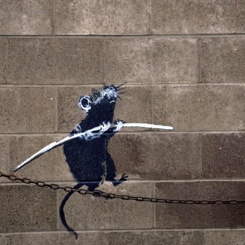 Banksy                                                                                                                                                      Plus