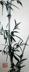 Bamboo **