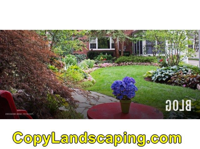 Cool info on  Sunshine Landscape & Garden Center