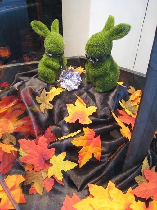 our new window display #autumn #bunny #diamonds