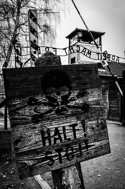 the importance of kristallnacht to the jewish holocaust To understand the significance of kristallnacht and why it is important to study its   following the nazi attack on jewish homes, the jews were required to make.