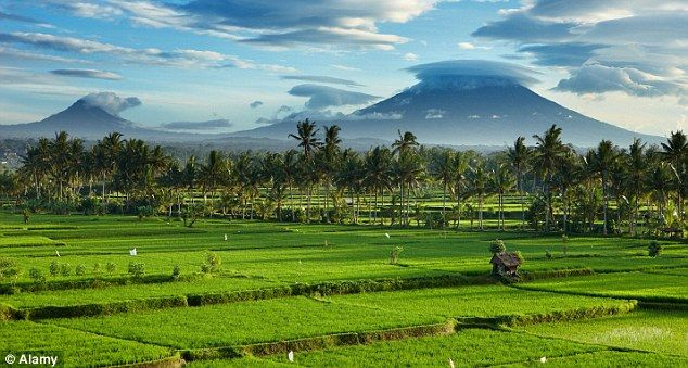 Following Julia Roberts to Eat, Pray, Love on the enchanting island of Bali
