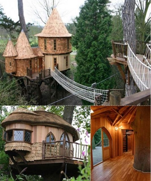38 Best Fun Tree Houses For Kids Images On Pinterest Treehouses