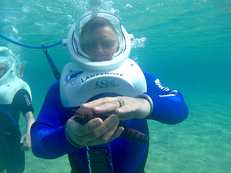 Sea trek - Review of Native Diving Lanzarote, Costa Teguise, Spain - TripAdvisor