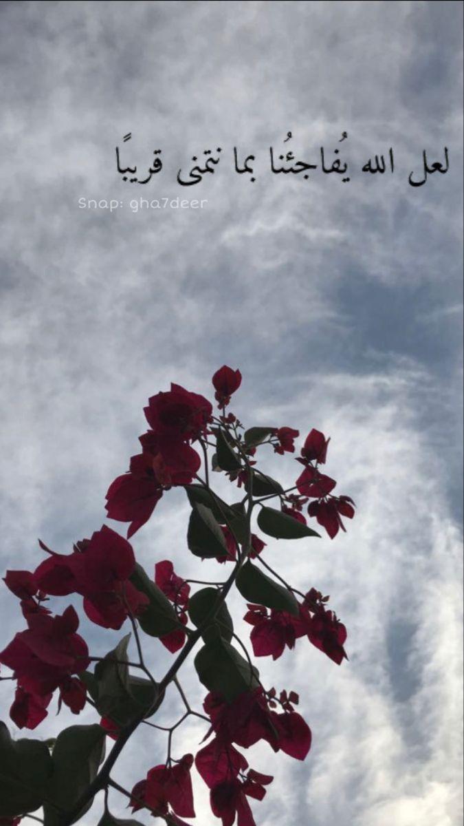 خلفيات بعبارات ايجابية Best Friend Photography Nature Aesthetic Friends Photography