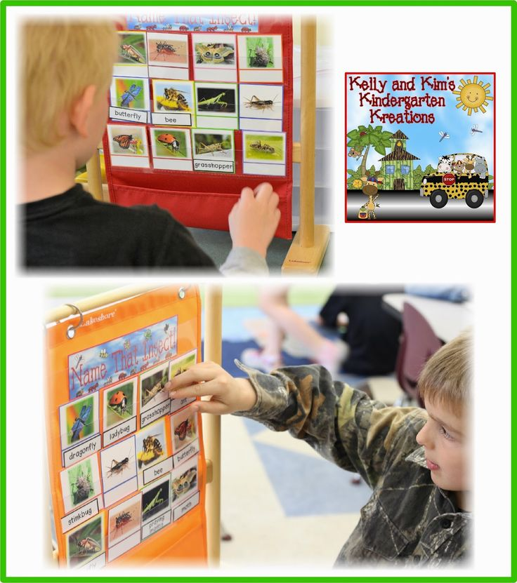 Incredible Insects Literacy and Math Centers Bundle HALF OFF until 5/8/15 PLUS other Markdown Monday deals too! Check it out!