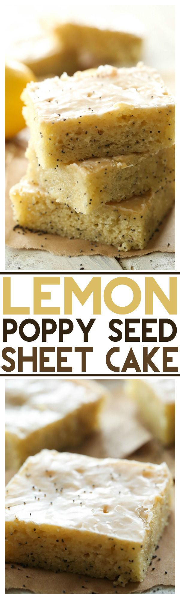 Lemon Poppy Seed Sheet Cake... This cake is so moist and delicious! The texture and flavor are incredible and this recipe will quickly become a new favorite!
