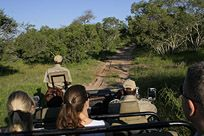 Game drives -  Game viewing at one of our local game reserves (you can even view the Big 5!), or nature drives are available with an experienced game ranger, knowledge-able about the area.