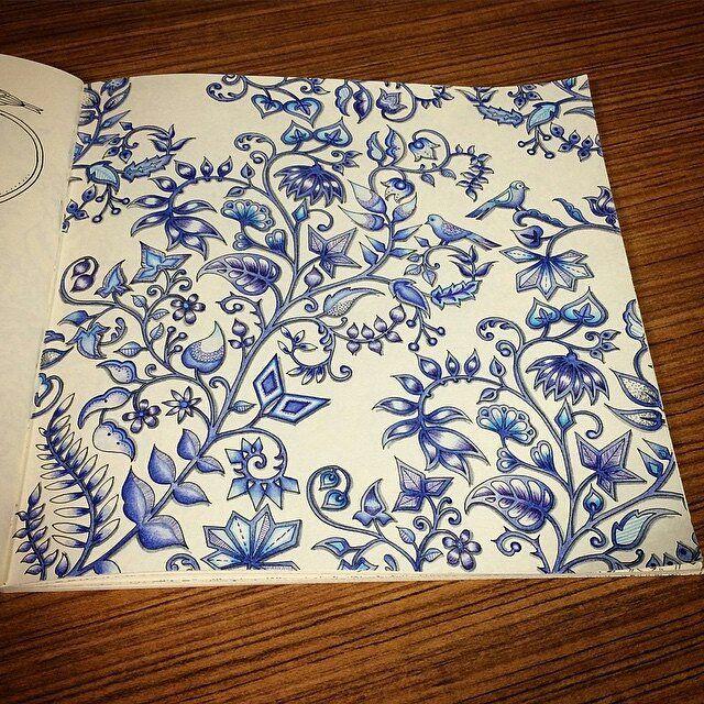 Die Besten 25 Johanna Basford Ideen Auf Pinterest