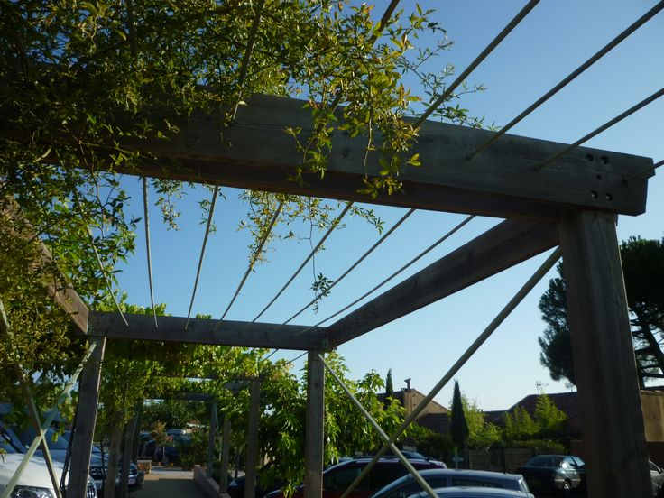 Simple Timber And Wire Pergola Structure For A Walkway In