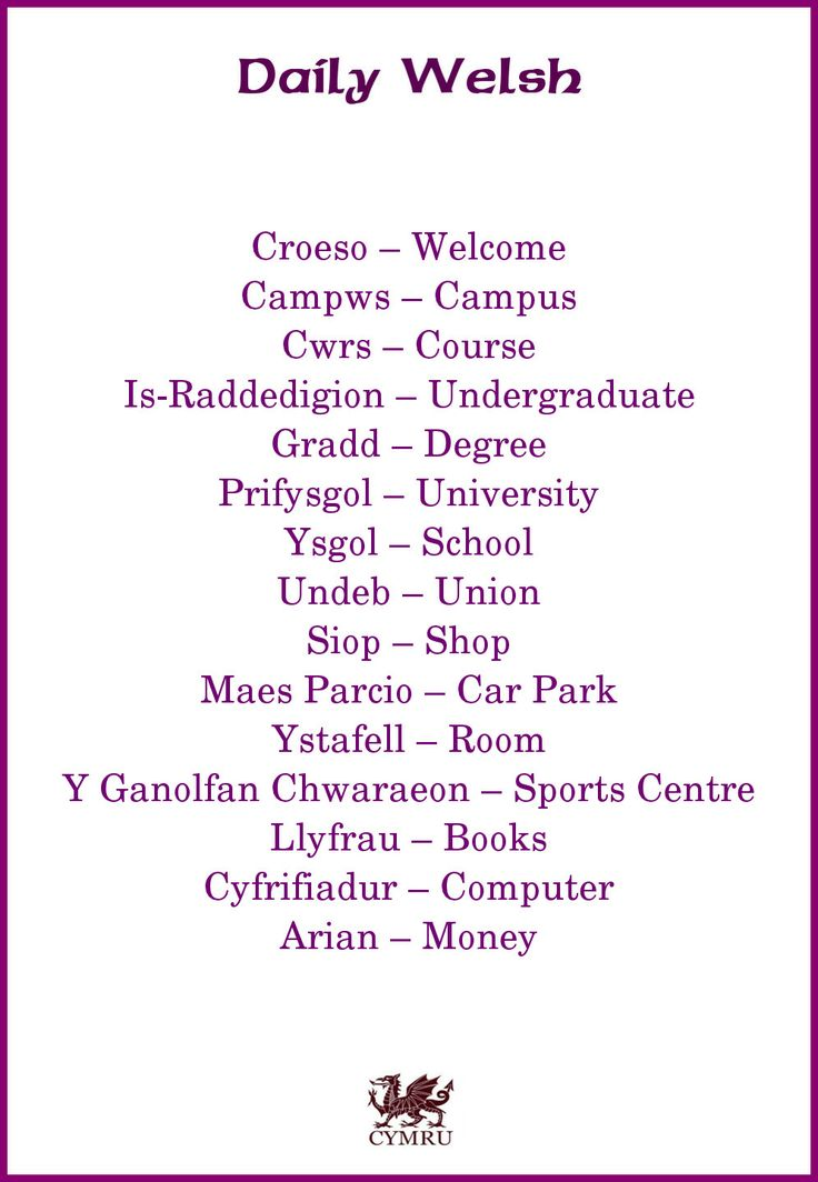 Daily Welsh - useful phrases for attending a welsh university.