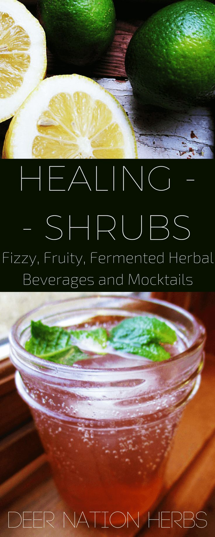 Fermented shrubs and mocktails are naturally healthy, and a wonderful medium for herbs! Learn how to make mocktails into healing herbal preparations that taste great.