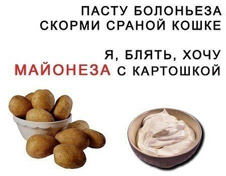 sovfourteen