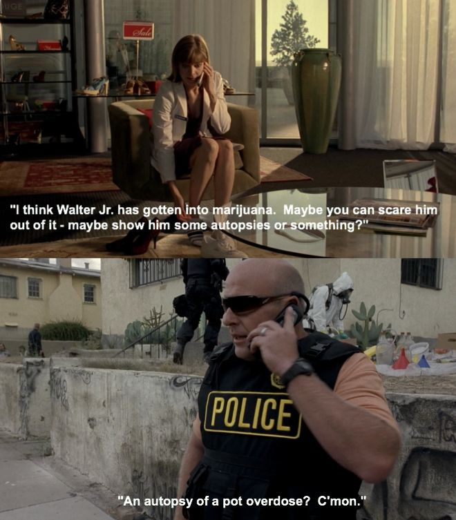If only our government was as logical as scriptwriters for Breaking Bad...