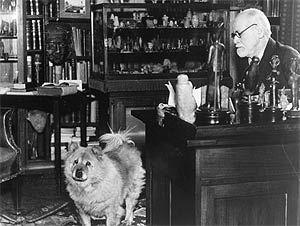 Sigmund Freud's Chow Chow Jofi, 1937 (Sigmund Freud Copyrights)