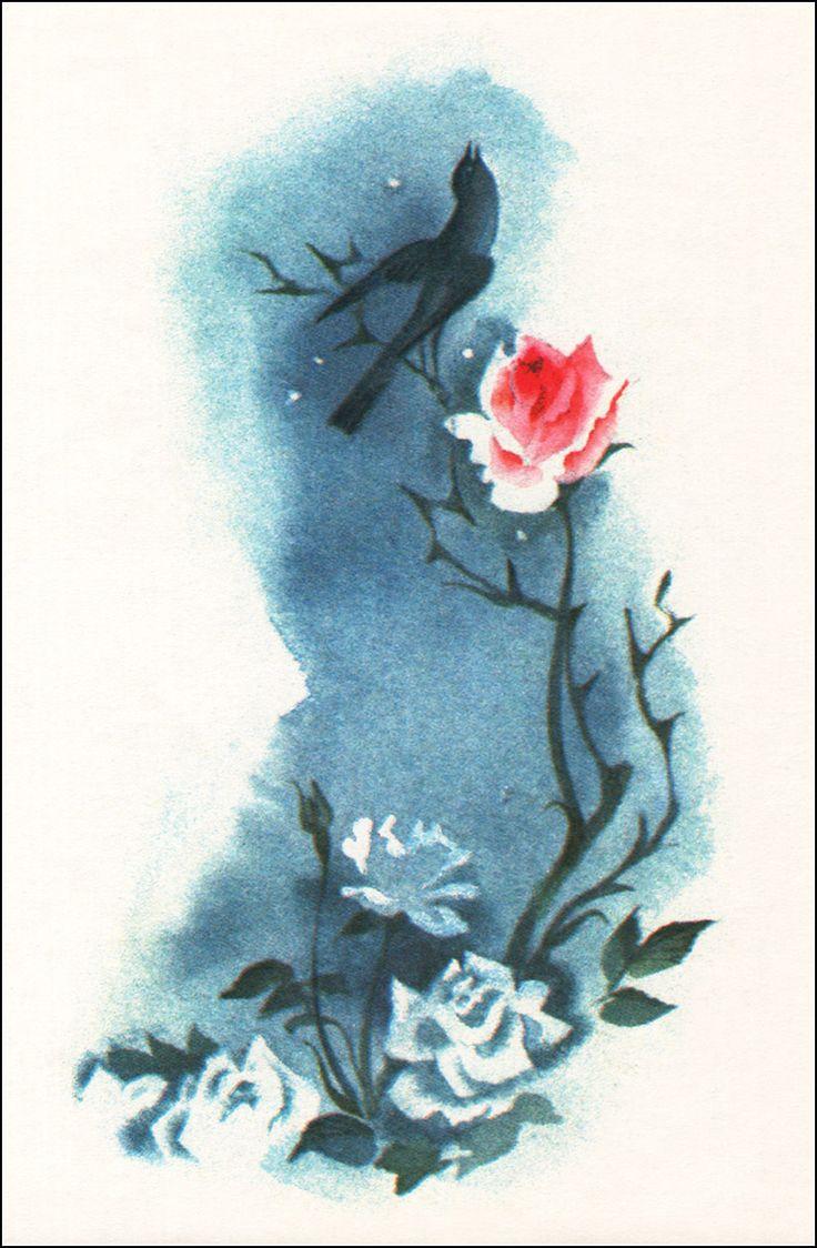 Иллюстрации к рассказу соловей и роза