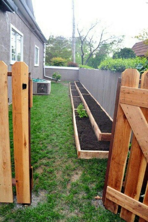 Raised beds against the fence. This is exactly what I want to build for my strawberrries and peas and beans