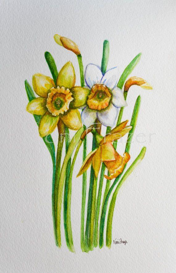 Daffodil Flower March Birthday Flowers Original Watercolor