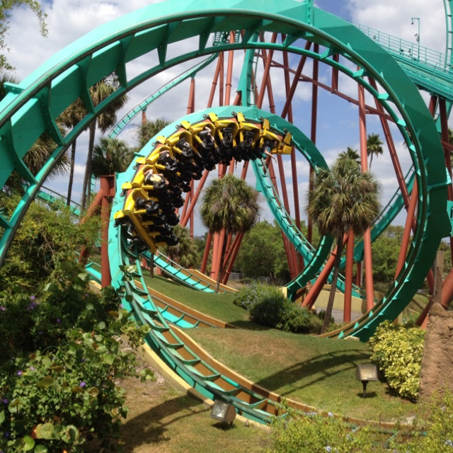51 Best Things I Love About Florida Images On Pinterest: busch gardens tampa water park