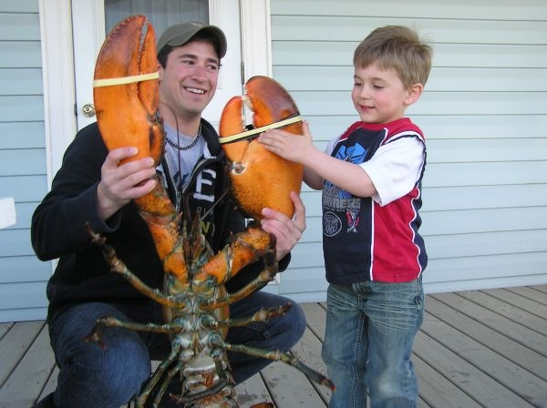 Julian German holds a 23.2-pound jumbo lobster he caught off Meteghan, N.S. as captain of the Mega Hawk. The giant crustacean is almost as big as four-year-old Dominic Cottreau of Meteghan.  Marcel Cottreau photo