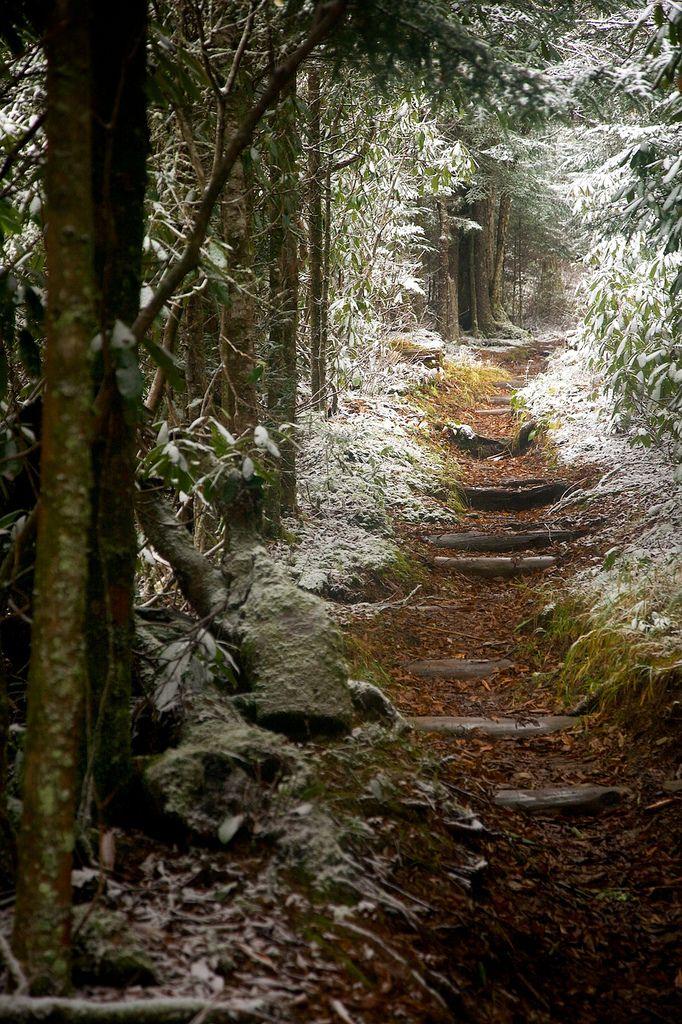 Snowy, Smokey Mountains Trail