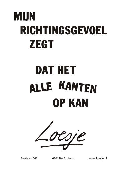 Sta open, want alles is mogelijk! #Loesje #quote