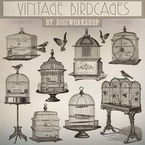 #Birdcage Clip Art - #Vintage Birdcage, #victorian clipart contains a collection of digital images with vintage images of birds, birdcages in victorian style   This amazing re... #etsy #digiworkshop #scrapbooking #illustration #creative #clipart #printables #cardmaking #retro