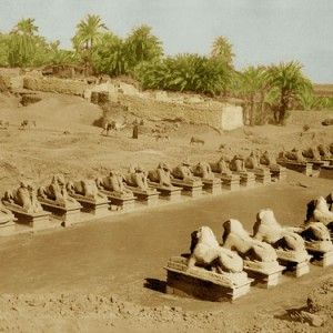 """Archaeologists in Egypt are excavating the first stretch of a two-mile avenue lined with hundreds of carved sphinxes.  Reportedly, this """"Avenue of the Sphinxes"""" was built more than 3,000 years ago."""