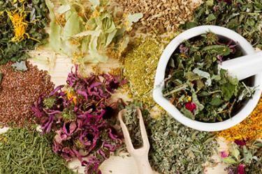 Irish Moss: The Shine Enhancing, Scalp Soothing Ingredient