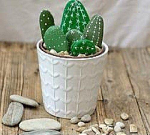Seni Melukis Batu menjadi Hiasan Kaktus