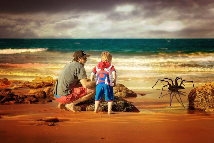 Spiderman's Friend
