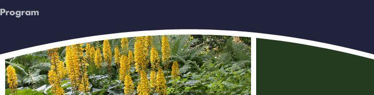 Growing Hydrangeas - UMass Extension Landscape, Nursery and Urban Forestry Program