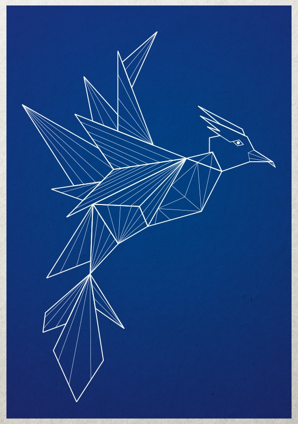 How many triangles and diamonds do you see in this Phoenix? | University of Phoenix #imagination #art