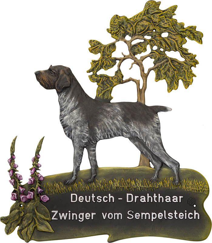 Deutsch drahthaar wurfankundigung 2015