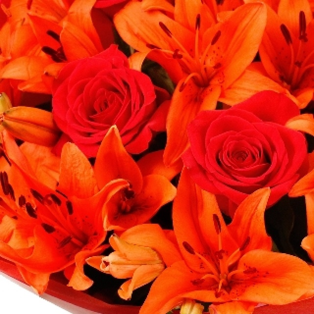 Flowers - Red Lily & Rose Hand-tied bouquet. www.eden4flowers.co.uk