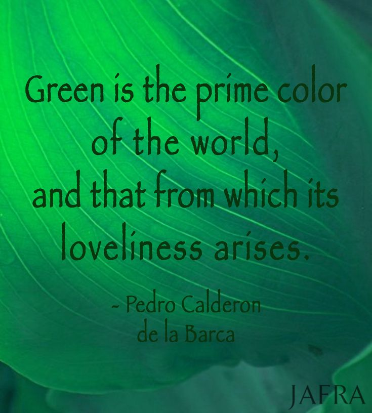 """""""Green is the prime color of the world, and that from which its loveliness arises."""" ~ Pedro Calderon de la Barca #color #quote #green"""