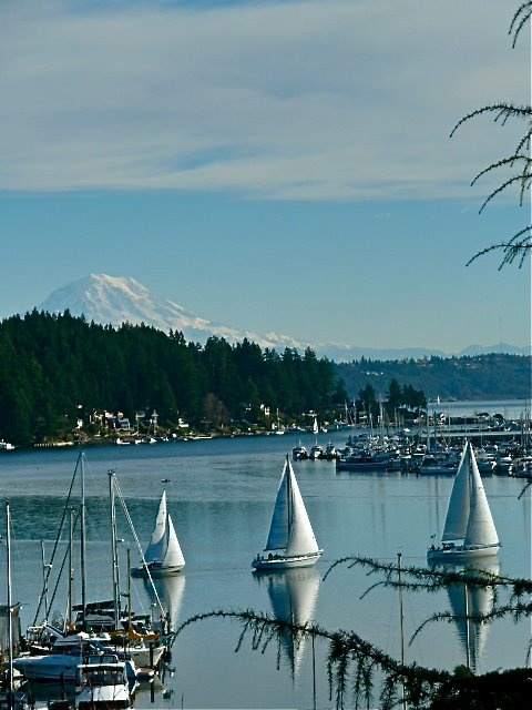 Photo By Jean Williamson Carter It Was A Truly Beautiful Day In Gig Harbor,  WA