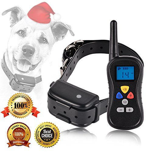 What Is The Best Wirels Collar For A Big Dogs