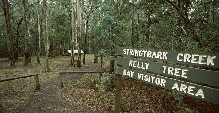 Stringybark Creek is a small creek in the Wombat Ranges, Victoria, Australia. It is famous as the place where bushranger Ned Kelly, his brother Dan Kelly, and friends Joe Byrne and Steve Hart killed three policemen on 26 October 1878.  A memorial stone has been put in the picnic area, and a tree at the site of the shootings, the Kelly Tree, has a small copy of Ned Kelly's helmet attached to it.