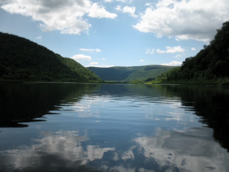 15 best images about west branch of the susquehanna river for Susquehanna river fishing