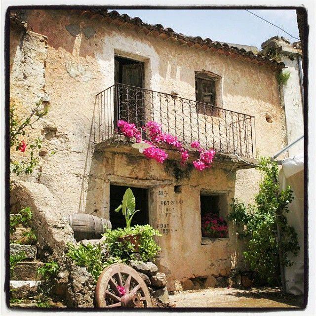 """Il piccolo borgo di Triei è conosciuto in tutta l'Ogliastra per la particolarità del suo centro storico e per i bellissimi murales che adornano le vie del paese. In questa foto è rappresentata un'abitazione tradizione nel rione di """"S'Ungiasseddu"""". #triei #ogliastra #Sardegna"""
