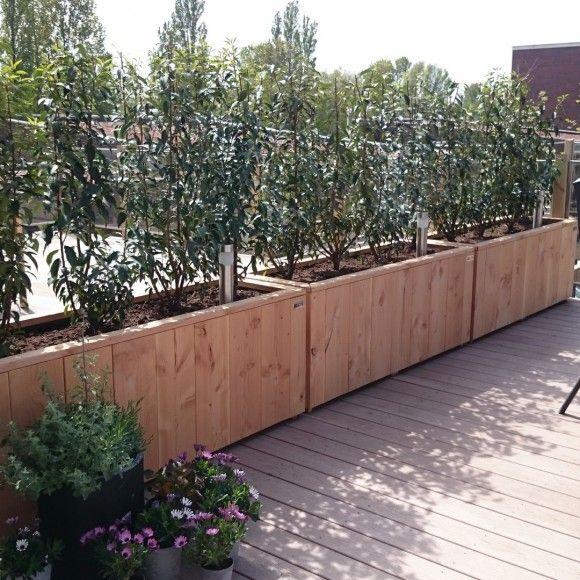 25 beste idee n over buiten plantenbakken op pinterest buiten planters bloempotten voor - Weergaven tuin lange ...
