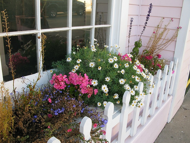 Bay Window Garden Ideas front yard landscaping we did it ourselves family balance sheet Find This Pin And More On Bay Windows Window Boxes Shutters Hardware