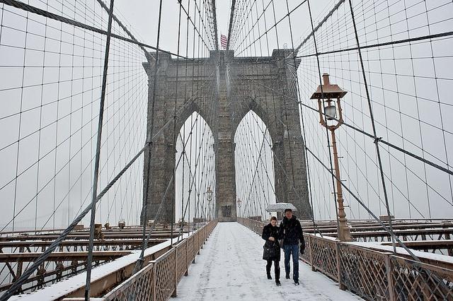 Brooklyn Bridge Net