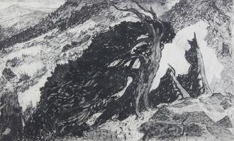 Пейзаж - Вейберт Л.П. Кедры. офорт 37Х61 1966г (193)