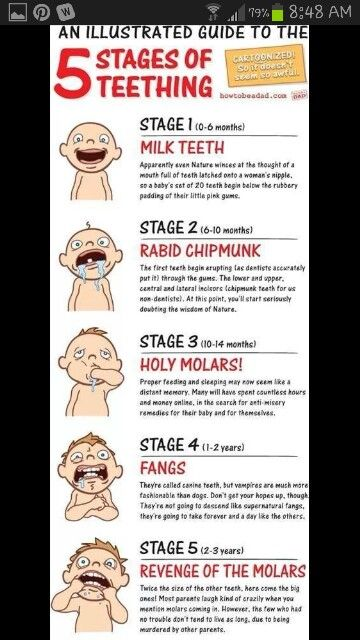 Teething chart with humor :) lol