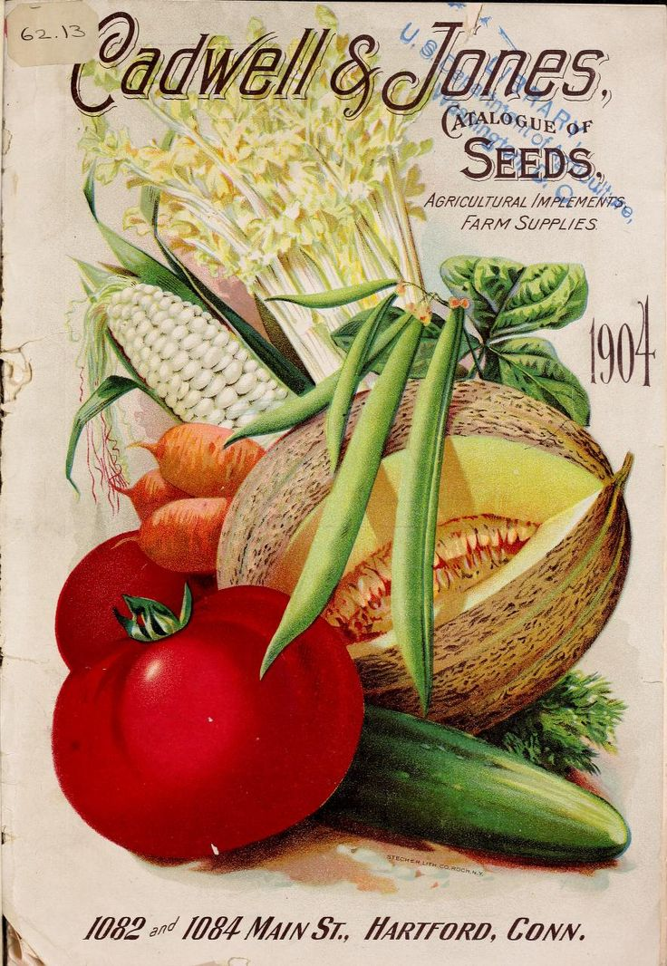 Caldwell & Jones Catalogue - 1904 : seeds, agricultural implements, farm supplies.
